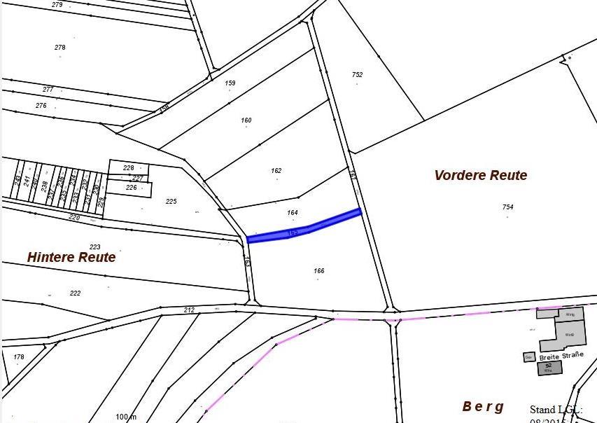 Entwidmung Feldweg Flst. 165
